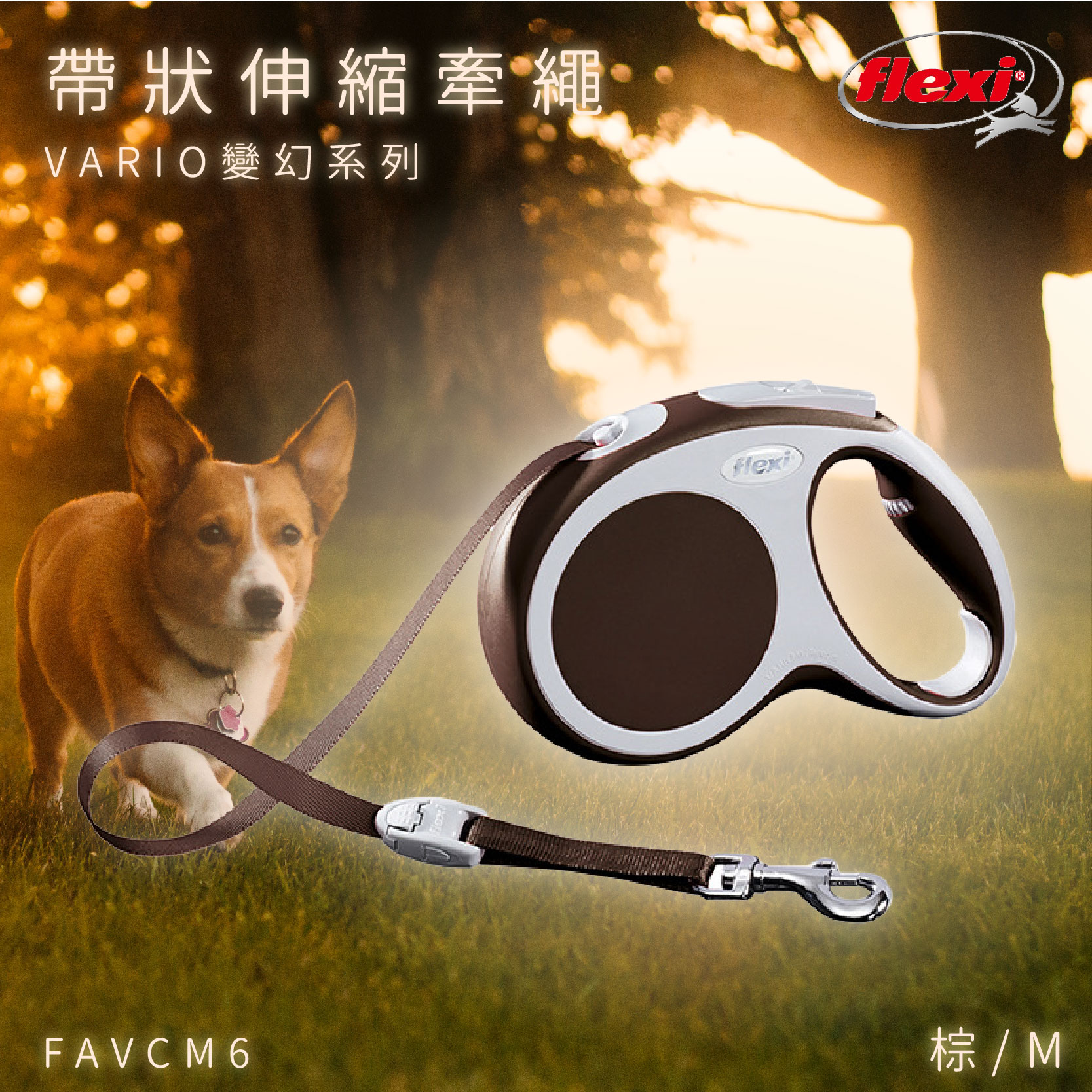 Flexi 帶狀寵物牽繩 棕M FAVCM6 變幻系列 舒適握把 狗貓 外出用品 寵物用品 寵物牽繩 德國製