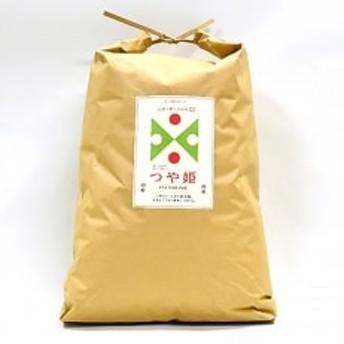 【令和元年産新米予約】新庄市産「つや姫」 玄米 15kg
