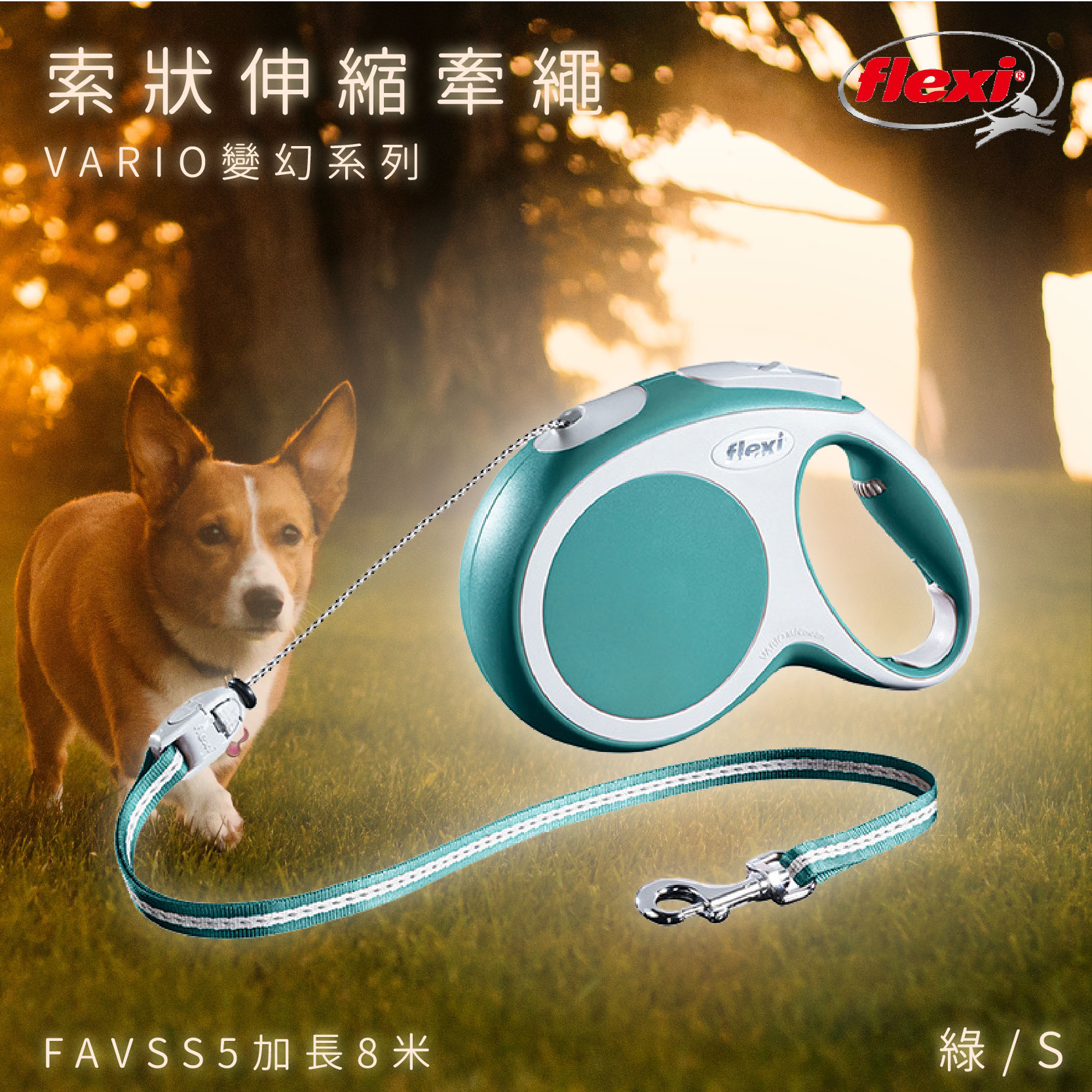 Flexi 索狀寵物牽繩 綠S加長8米 FAVSS5 變幻系列 狗貓 外出用品 寵物用品 寵物牽繩 德國製