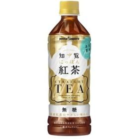 知覧 にっぽん紅茶 無糖 ( 500mL24本入 )