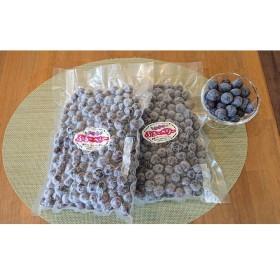 【男鹿ぶるーべりーガーデン】 冷凍ブルーベリー500g×2パック(合計1kg)(2パック)