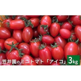 <くだものの笠井園>ミニトマト「アイコ」約3kg