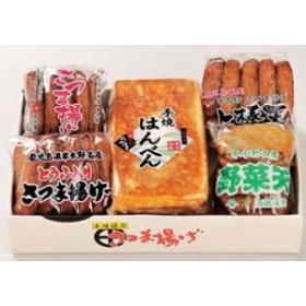 鹿児島 高浜蒲鉾 はんべん、さつま揚げセット