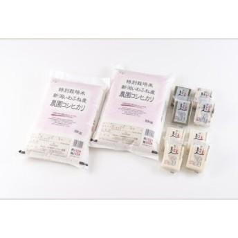 【新米早期予約】特別栽培米岩船産コシヒカリ10kg・杵つき餅セット C112