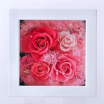 <Belles Fleurs Tokyo/ベル・フルール> フレームM ピンク 【三越・伊勢丹/公式】