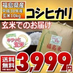 コシヒカリ 玄米10kg 30年産 調整済玄米 送料無料 通常発送 ※沖縄・その他離島は別途送料追加