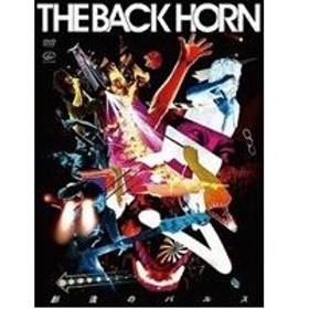THE BACK HORN/創造のパルス【通常版】 [DVD]