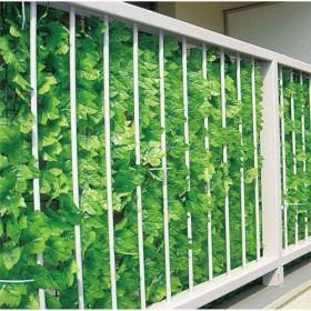 ベランダガーデニングに人気の目隠しグリーンフェンスグリーン