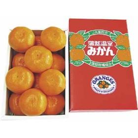 愛知県産蒲郡ハウスみかん GMG-01 フルーツ