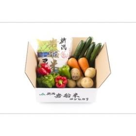 【新米早期予約】岩船米コシヒカリと季節の野菜セット1 A118