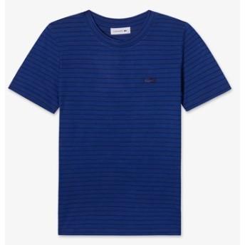 レーヨンボーダーTシャツ