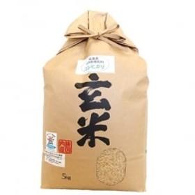 環境こだわり農産物 低農薬100%有機肥料コシヒカリ 玄米5kg
