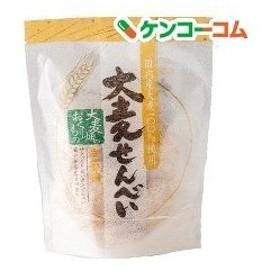 麦のいしばし 大麦せんべい 生姜味 ( 25g )/ 麦のいしばし