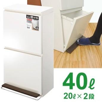 ゴミ箱 ペダル 分別 ダストボックス 2段 ワイド 40L ホワイト