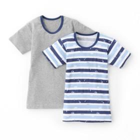 株式会社ステップワン キッズ 【在庫限り】トドラー男児 2枚組半袖シャツ