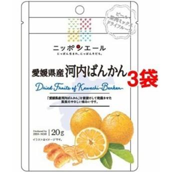 全農 愛媛県産河内ばんかん ドライフルーツ(20g3袋セット)[ドライフルーツ]