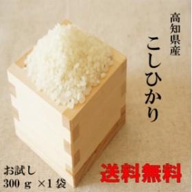 新米 令和元年産 ポイント消化 送料無料 300 食品 米 お試し 高知コシヒカリ300g(2合) 1kg未満 令和元年産 代金引換不可 メール便