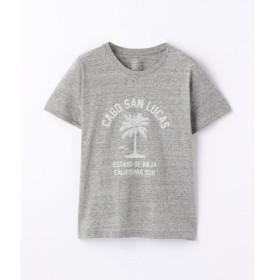 TOMORROWLAND / トゥモローランド コットンジャージー ロゴTシャツ(CABO SAN LUCAS)