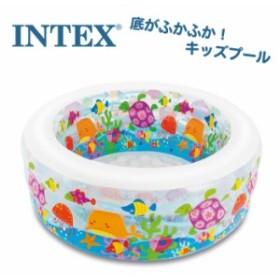 プール キッズ 子供用プール INTEX インテックス アクアリウムプール ファミリープール  クッション 水あそび レジャープール 家庭用プー
