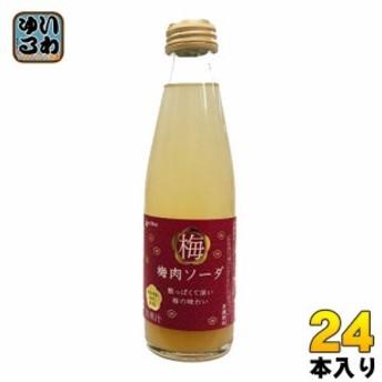 コーラルブルー 梅肉ソーダ 200ml 瓶 24本入