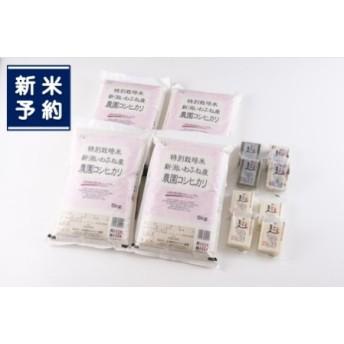 【新米早期予約】D110 特別栽培米岩船産コシヒカリ20kg・杵つき餅セット