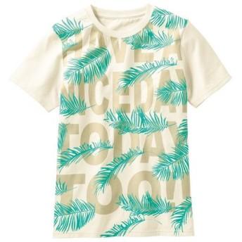 【レディース】 プリントTシャツ(S-5L・綿100%・半袖) - セシール ■カラー:アイボリホワイト ■サイズ:3L,L,M,S,LL,4L-5L