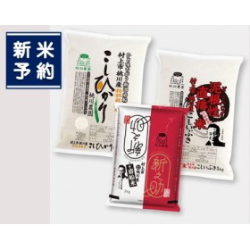 【新米早期予約】B216 村上市桃川産 岩船米3種のセット! コシヒカリ・新之助・こしいぶき セットで12Kg