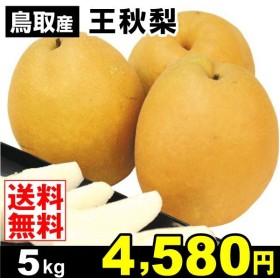 梨 鳥取産 王秋梨 5kg なし 食品 国華園