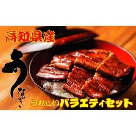 高知県産うなぎ蒲焼 ハーフ4袋.きざみ2袋+お吸物付き/C
