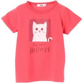 カットソー - koe ネコグラフィック半袖Tシャツ