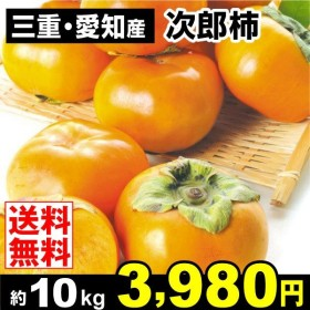 柿 かき 三重・愛知産 次郎柿 約10kg ご家庭用 果物 食品 国華園