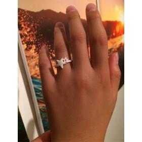 白い星の指輪