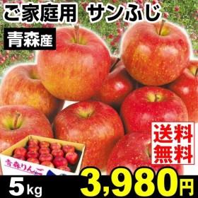りんご 青森産 ご家庭用サンふじ 5kg 林檎 果物 国華園