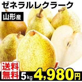 梨 山形産 ゼネラルレクラーク 5kg なし 食品 国華園
