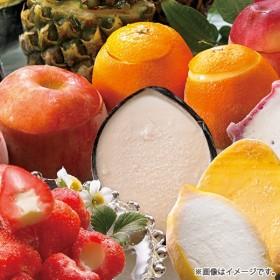【お中元ギフト】彩り豊かなフルーツシャーベット計11個 6月下旬より発送