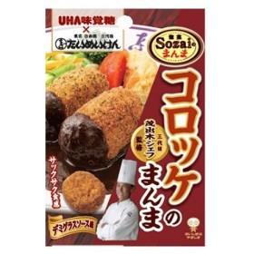 UHA味覚糖 Sozaiのまんま コロッケのまんま デミグラスソース味 30g