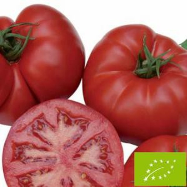 グリーンフィールドプロジェクト トマト 大玉/ビーフトマト 小袋
