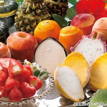 【お中元ギフト】彩り豊かなフルーツシャーベット計22個 6月下旬より発送