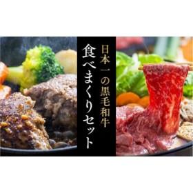 豊後牛ハンバーグ(9個)&「おおいた和牛」おまかせすきやき肉(500g)贅沢セット