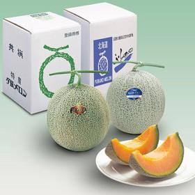 富良野メロンと選べるギフト(青肉メロン) フルーツ