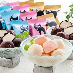 イーペルの猫祭り プチチョコアイス アイスクリーム・シャーベット
