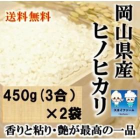 ポイント消化 送料無料 食品 米 お試し 岡山県産ヒノヒカリ 450g(3合)×2袋 1kg未満 メール便 ひのひかり 代金引換不可