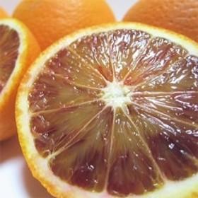 【高級柑橘】和歌山県産 濃厚ブラッドオレンジタロッコ 約3kg