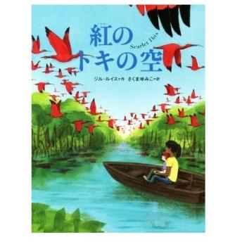 紅のトキの空 評論社の児童図書館・文学の部屋/ジル・ルイス(著者),さくまゆみこ(訳者)