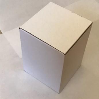 10枚【サック式フリーボックス】 95×95×H130㎜
