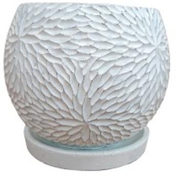 植木鉢 おしゃれ コンクリートポット CC035-150 5号(15cm) / 陶器鉢 白 黒 丸形 セメント
