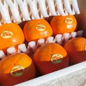 稀少品種 陽豊柿 2L前後 6玉