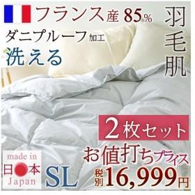 全品P5倍★2枚まとめ買い 羽毛布団 シングル ロマンス小杉 肌掛け布団 洗える フランス産ホワイトダウン85% 日本製