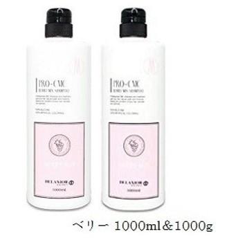 (セット)千代田化学 デラクシオ プロ CMC シャンプー ベリー 1000ml & トリートメント ベリー 1000g
