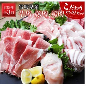 〈宮崎県産〉牛・豚・鶏こだわりセレクトセット《定期便》全3回